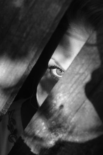 De verborgen achterkamer